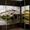 Натяжные потолки,  шкафы-купе,  гардеробные,  кухни #717867