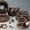 Торговля автомобильными деталями,  узлами и принадлежностями #1481470