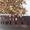 соли лизунцы,  ракушка кормовая #1583127