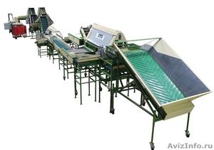 оборудование для мойки, сухой очистки, сортировки, калибровки, фасовки овощей - Изображение #1, Объявление #818775
