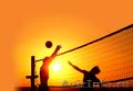 обучение волейболу взрослых