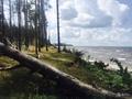 Участок 7, 5 гектар 1 береговая линия